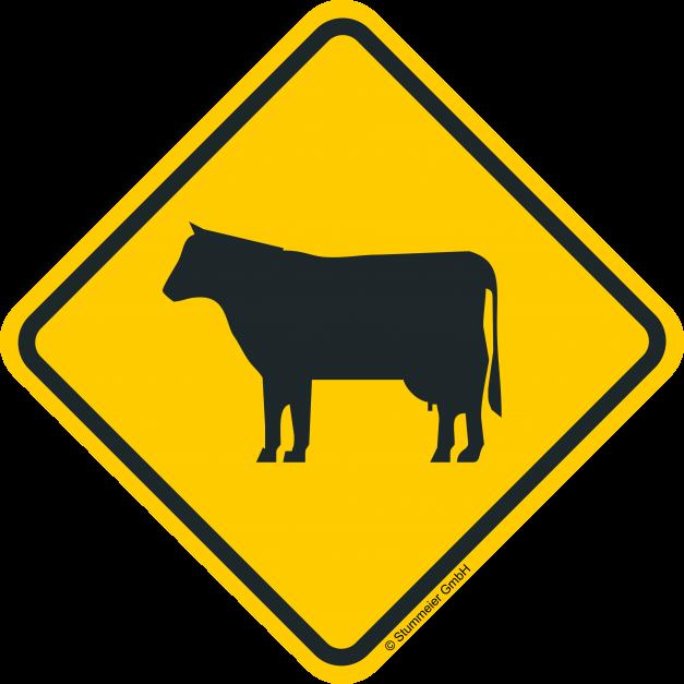 Verkehrsschild Australien Rind
