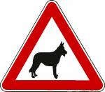 Achtung Hund - Schäferhund