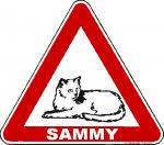 Achtung Katze mit Wunschtext