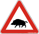 Hinweisschild Achtung Wildschwein