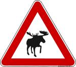 Verkehrsschild Kanada Elch